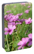 Spring Dream Portable Battery Charger