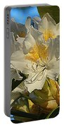 Spring Exuberance  Portable Battery Charger