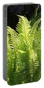 Spring Fern Fronds Portable Battery Charger