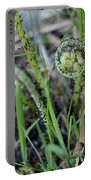 Spring Ferns Portable Battery Charger
