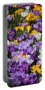Spring Fling Portable Battery Charger