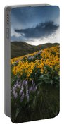 Balsamroot Explosion In Boise Idaho Usa Portable Battery Charger
