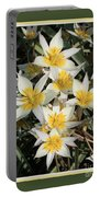 Spring Flowers With Green Border Portable Battery Charger