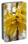Spring Forsythia Blossoms Portable Battery Charger