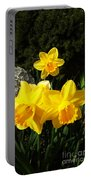 Spring Gold Portable Battery Charger