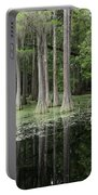 Spring Green In Cypress Swamp Portable Battery Charger