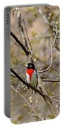 Spring Grosbeak Portable Battery Charger