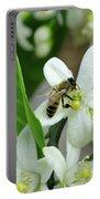 Spring Honey Bee Pollinates Orange Citrus Flower Portable Battery Charger