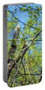Spring In The Deep Woods Portable Battery Charger