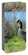 Spring In The Wetlands Portable Battery Charger