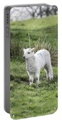 Spring Lamb Portable Battery Charger