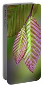 Spring Leaves Portable Battery Charger