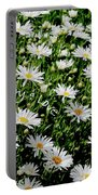 Spring Loyal Love Daisies  Portable Battery Charger