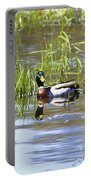 Spring Mallard 2010 Portable Battery Charger