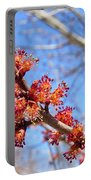 Spring Maple Blossoms Portable Battery Charger