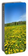 Spring Meadow Full Of Dandelions Flowers And Green Grass Portable Battery Charger