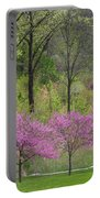 Spring Melody Portable Battery Charger
