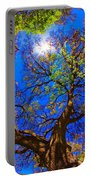 Spring Oak Portable Battery Charger