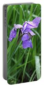 Spring Rain Portable Battery Charger