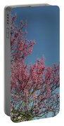 Spring Redbud Tree Portable Battery Charger