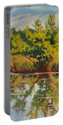 Spring Reflection Portable Battery Charger