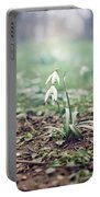Spring Rising Portable Battery Charger