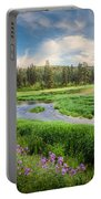 Spring River Valley Portable Battery Charger