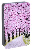 Spring Road  Portable Battery Charger