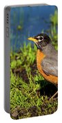 Spring Robin Portable Battery Charger