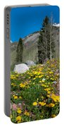 Spring Rocky Mountain Landscape Portable Battery Charger