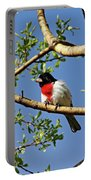 Spring Rose Breasted Grosbeak Portable Battery Charger