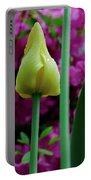 Spring Series #05 Portable Battery Charger