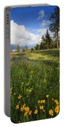 Spring Shadows Portable Battery Charger by Mike  Dawson