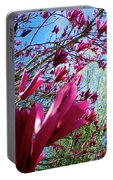 Spring Sky Portable Battery Charger