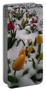 Spring Snow Portable Battery Charger