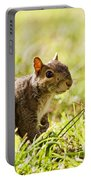 Spring Squirrel Portable Battery Charger