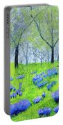 Spring Sunrise Portable Battery Charger
