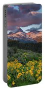Spring Sunset In The Tetons Portable Battery Charger