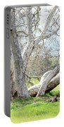 Spring Sycamore Tree Portable Battery Charger