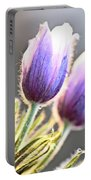 Spring Time Crocus Flower Portable Battery Charger