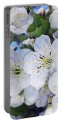 Spring Time Portable Battery Charger