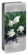 Spring Time Trumpets  Portable Battery Charger