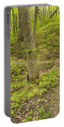 Spring Trail Scene 10 Portable Battery Charger