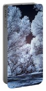 Spring Trees And Shadows Portable Battery Charger