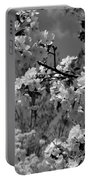 Spring Trees - B And W Portable Battery Charger