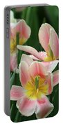 Spring Tulips 151 Portable Battery Charger