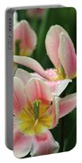 Spring Tulips 152 Portable Battery Charger