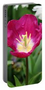 Spring Tulips 186 Portable Battery Charger