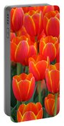 Spring Tulips 206 Portable Battery Charger