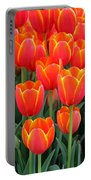 Spring Tulips 210 Portable Battery Charger